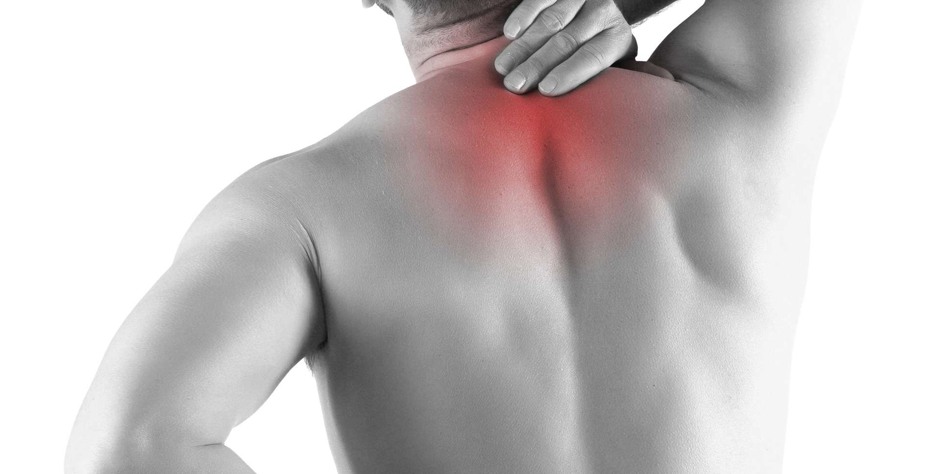 Supporting Spinal Health