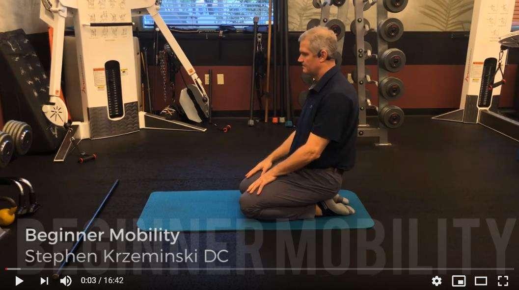 Beginner Mobility Exercise
